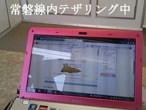 DSC_0027-1.jpg